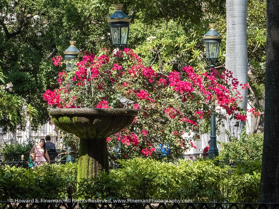 Parque across from Palacio de los Capitanes Generales Casa de gobierno