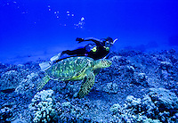 Scuba diver and green sea turtle