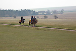 Horses being exercised on the gallops, Beckhampton, Wiltshire, England, UK