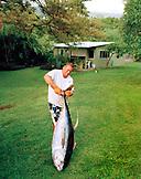 USA, Hawaii, The Big Island, a man lifts a large yellowfin tuna at his home near Kealakekua Bay