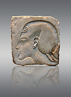 Ancient Egyptian relief portrait of King Akhenaten from Amarna. 18th Dynasty 1340 BC . Neues Museum Berlin Cat No: AM 21683.