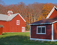 Sleeping Bear Dunes National Lakeshore, Michigan: The red barn and shed of the Crouch farm in morning light