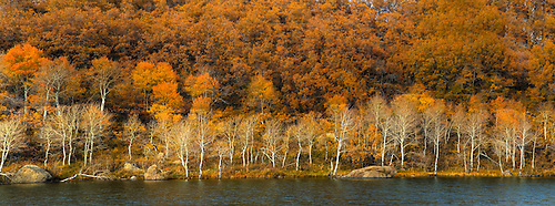 Fall has arrived at Kolob Reservoir near Zion National Park, Utah