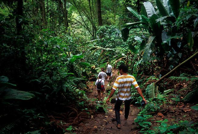 Hikers walk down steep trail, Les Gorges de la Falaise, canyon near village of Ajoupa Bouillon, Martinique, French West Indies
