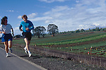 Portland, Sauvie Island, Columbia River, Oregon, Couple jogging run past farm fields, Pacific Northwest, USA,.