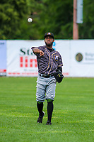 Quad Cities River Bandits outfielder Marcos Almonte (1) during a Midwest League game against the Beloit Snappers on June 18, 2017 at Pohlman Field in Beloit, Wisconsin.  Quad Cities defeated Beloit 5-3. (Brad Krause/Krause Sports Photography)
