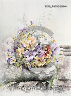 Isabella, FLOWERS, paintings(ITKE023836AM-C,#F#) Blumen, flores, illustrations, pinturas ,everyday