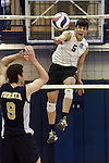 27 APR 2014: Luis Vega (5) of Springfield College spikes against Juniata College during the Division III Men's Volleyball Championship held at the Kennedy Sports Center in Huntingdon, PA. Springfield defeated Juniata 3-0 to win the national title.  Mark Selders/NCAA Photos