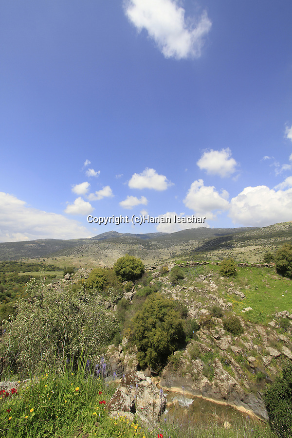 Golan Heights, a view of Sa'ar stream