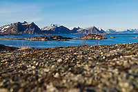 View from Stamsund across fjord to mountains of Vestvagoy, Lofoten Islands, Norway
