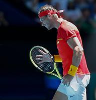 8th January 2020; RAC Arena, Perth, Western Australia; ATP Cup Australia, Perth, Day 6; Spain versus Japan; Rafael Nadal of Spain reacts to his shot against Yoshihito Nishioka of Japan - Editorial Use
