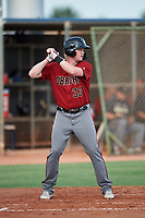 AZL D-backs Marty Herum (33) at bat during a rehab assignment in an Arizona League game against the AZL Mariners on August 7, 2019 at Peoria Sports Complex in Peoria, Arizona. AZL D-backs defeated the AZL Mariners 4-1. Walston pitched one inning and allowed one earned run while striking out three batters. (Zachary Lucy/Four Seam Images)