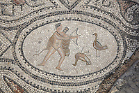 Roman mosaic of Hercules slaying the Stymphalian birds with a bow and arrow, his sixth labour, from the Labours of Hercules mosaic in the House of the Labours of Hercules, 1st century AD, Volubilis, Northern Morocco. Volubilis was founded in the 3rd century BC by the Phoenicians and was a Roman settlement from the 1st century AD. Volubilis was a thriving Roman olive growing town until 280 AD and was settled until the 11th century. The buildings were largely destroyed by an earthquake in the 18th century and have since been excavated and partly restored. Volubilis was listed as a UNESCO World Heritage Site in 1997. Picture by Manuel Cohen