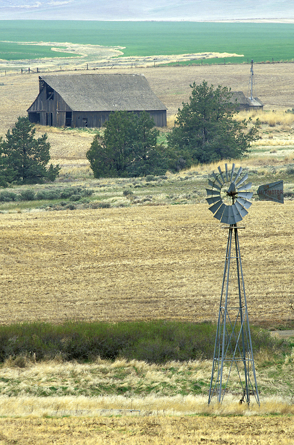 Windmill and old barn in fields, Bickleton, Washington.