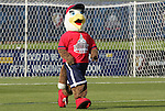 11 April 2009: Glory, Washington Freedom's mascot. The Washington Freedom played the Chicago Red Stars to a 1-1 tie at the Maryland SoccerPlex in Boyds, Maryland in a regular season Women's Professional Soccer game.