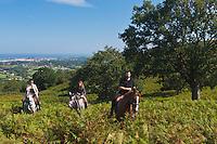 Europe/France/Aquitaine/64/Pyrénées-Atlantiques/Pays-Basque/Env d'Urrugne:  Randonnée équestre sur le Sentier des Contrebandiers  au Plateau  d'Aire Leku avec en fond la Baie de Saint-Jean-de-Luz