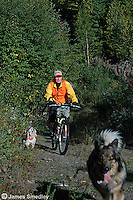 Hunter riding a bicycle with her dogs