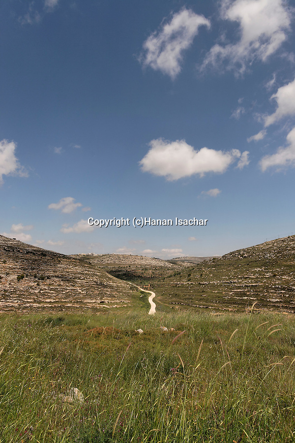 Samaria, a view east from Tel Shiloh