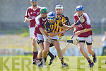Abbeydorney v Causeway in the Round Two Senior Hurling County Chamionship at Austin Stack Park in Tralee.