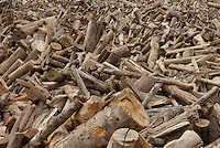 Produção de carvão com restos da árvore em áreas que estão sendo manejadas vendida para a indústria de ferro gusa do mesmo grupo.<br /> Área de manejo sustentável para exploração madeireira da Cikel.<br /> Paragominas, Pará, Brasil<br /> Foto Paulo Santos/Interfoto<br /> 17/11/2008
