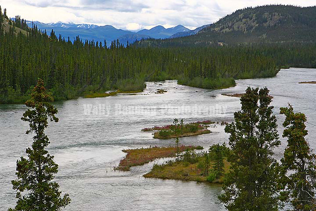 IMAGES OF THE YUKON,CANADA,Stewart River