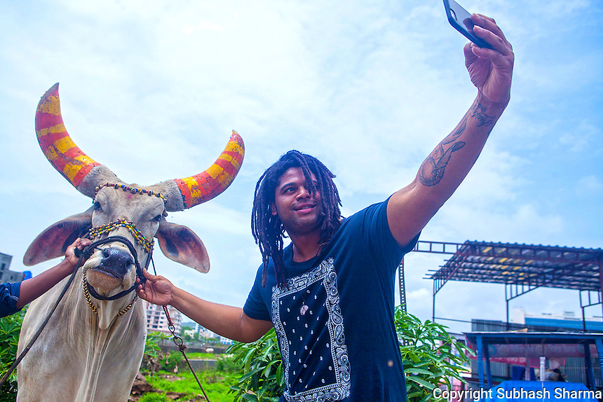 14 July 2016 - Pune - INDIA.<br /> Jamal Idris takes a selfie with a cow at Pune.Cows are considered to be holy in India<br /> <br /> (Subhash Sharma for the Sunday Telegraph)