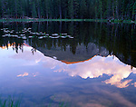 reflection, Nymph Lake, Rocky Mountain National Park, Colorado, USA