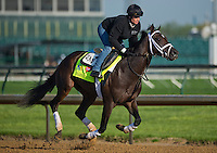Charming Kitten, trained by Todd Pletcher, during morning workouts for the Kentucky Derby at Churchill Downs in Louisville, Kentucky on April 30, 2013.