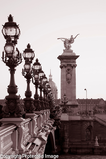 Pont Alexandre III Bridge in Black and White Sepia Tone in Paris, France