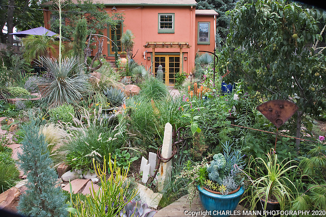 Dan Johnson's backyard Denver garden is an ever changing canvas of ornaments and plants.