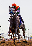 DEL MAR, CA - JULY 29: Unique Bella races with her shoe dangling from her front hoofing the Clement L Hirsch Stakes at Del Mar on July 28, 2018 in Del Mar, California.(Photo by Alex Evers/Eclipse Sportswire)