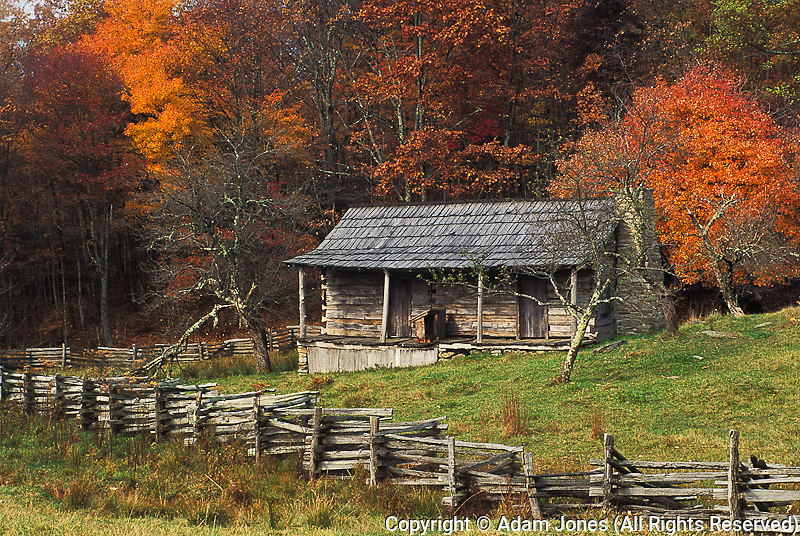 Cabin among fall colors, Hensley Settlement, Cumberland Gap National .Historical Park, Middlesboro, Kentucky