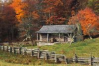 Cabin among fall colors, Hensley Settlement, Cumberland Gap National .Historical Park, Middlesboro, Kentucky