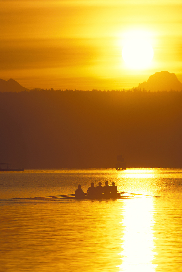 Crew rowing into sunrise on Lake Washington, Washington