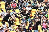 3rd November 2019, Wellington, New Zealand;  Fans react to a six during the second T20 International game between New Zealand and England, Westpac Stadium, Wellington, Sunday 3rd November 2019.  - Editorial Use