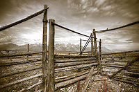 Corral with a view - Tetons - Wyoming