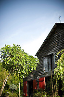 The barn- office of Architectural Trees in Bahama, NC