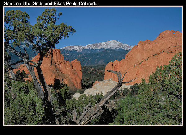 Framed by Juniper trees and red sandstone, Pikes Peak looks best with snow.<br />