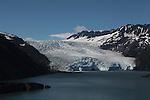 """""""Alaska Raw"""" / glaciers"""