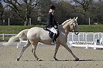31/03/2016 - Class 3 - Unaffiliated Dressage - Brook Farm Training Centre