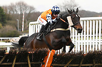 Winner of The Extech Cloud-Humanising It Handicap HurdleHawthorn Cottage ridden by Lucy K Barry and trained by Amy Murphy during Horse Racing at Plumpton Racecourse on 10th February 2020