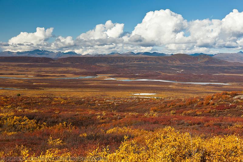 Autumn colors on the taiga and tundra wetlands, Denali highway, Alaska Range mountains, Interior, Alaska.