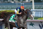 HALLANDALE BEACH, FL - JANUARY 25: Phat Man, #5, ridden by jockey Irad Ortiz, Jr., wins the Fred W. Hooper Stakes on January 25, 2020 at Gulfstream Park in Hallandale Beach, Florida. Kaz Ishida/Eclipse Sportswire/CSM