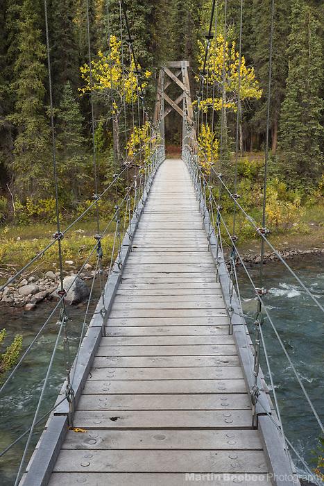 Swinging bridge over Riley Creek, Triple Lakes Trail, Denali National Park, Alaska