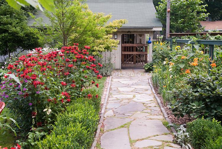 Red flowered bebalm Monarda, daylilies, sunflowers, bird house, garage, flagstone walkway path, in backyard landscaping with trees, shrubs, flowers