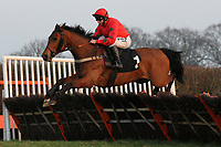 Beau Fighter ridden by Jamie Moore jumps during the Hepworth Conqueror Stout At Plumpton Racecourse Handicap Hurdle