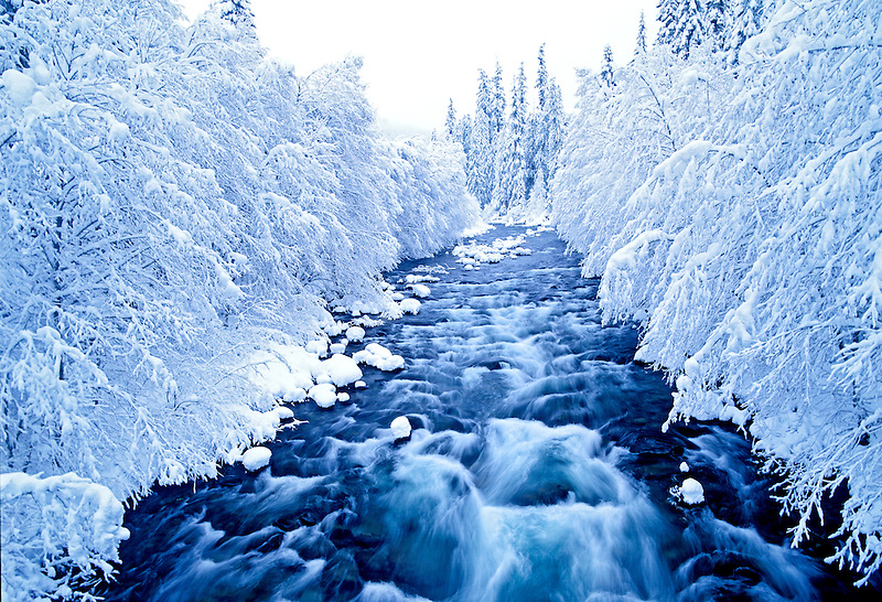North Santiam River in fresh snow. Oregon