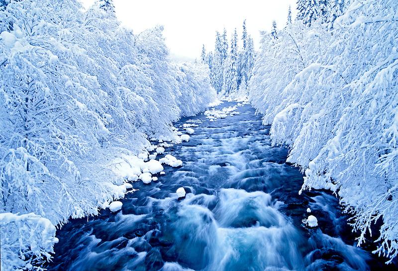 North Santiam River in fresh snow. Oregon