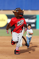 High Desert Mavericks mascot Wooly Bully races a young child around the bases during a game against the Visalia Rawhide at Stater Bros. Stadium on July 20, 2013 in Adelanto, California. High Desert defeated Visalia, 7-4. (Larry Goren/Four Seam Images)