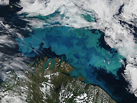 High altitude view of a plankton bloom in the Barents Sea